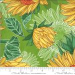 Moda Solana Sunflowers Sprout Fabric by Robin Pickens