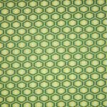 Amy Butler Midwest Modern 2 Honeycomb Forest Green Fabric