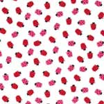 Timeless Treasures Mini Ladybugs White Fabric