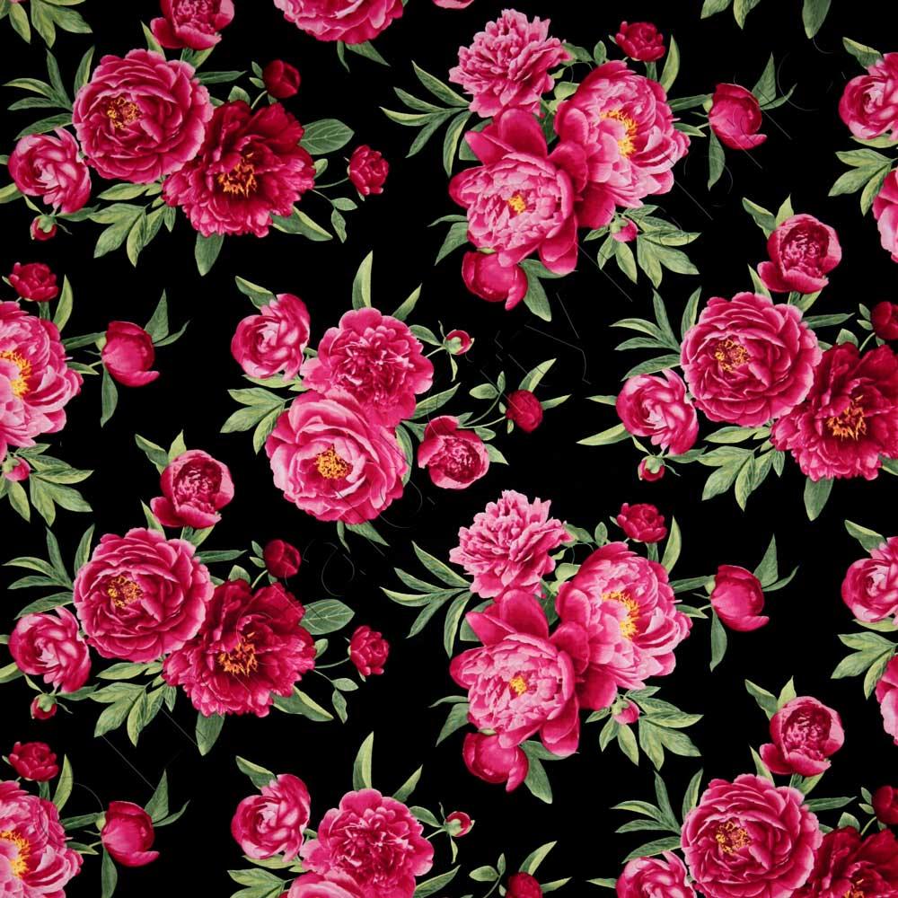 Timeless Treasures Peonies Medium Peony Floral Black ...