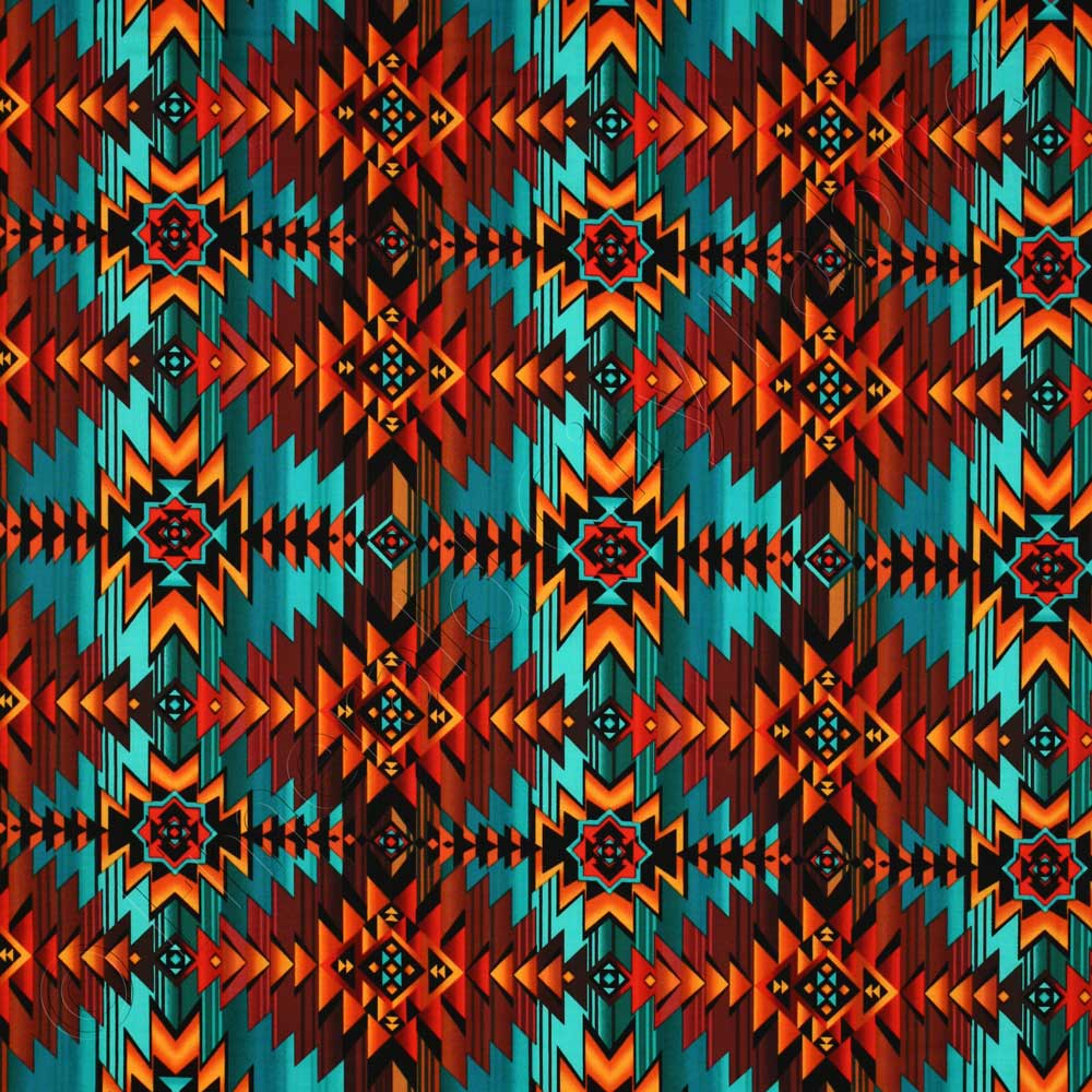 Timeless Treasures Southwest Indian Blanket Print Multi